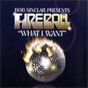 Bob Sinclar Press. Fireball - What I want (D.O.N.S Remix)