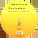 Gregor Salto - Bouncing harbour